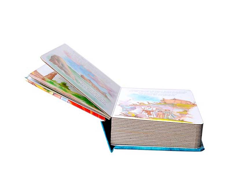 Children Bible Book Printing